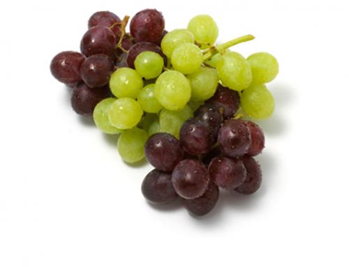 Grapes | India