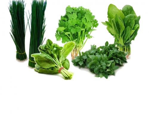 Herbs | India & Kenya